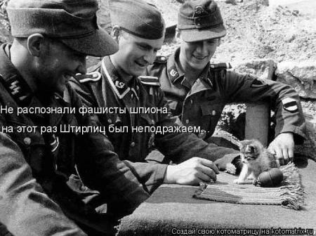 Russian LolCat