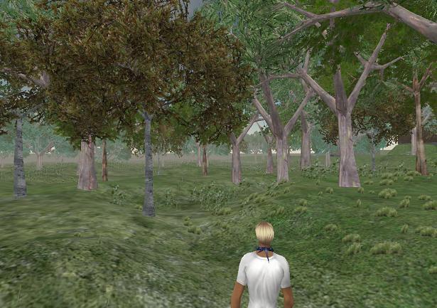 Rubi_woods_002