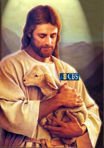 Sheepbs