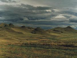 Russian_steppe_1